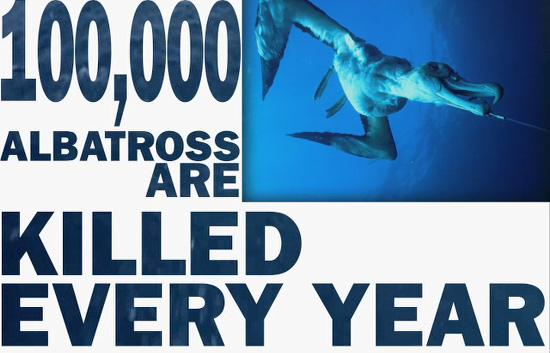 Los océanos en peligro por la sobreexplotación pesquera