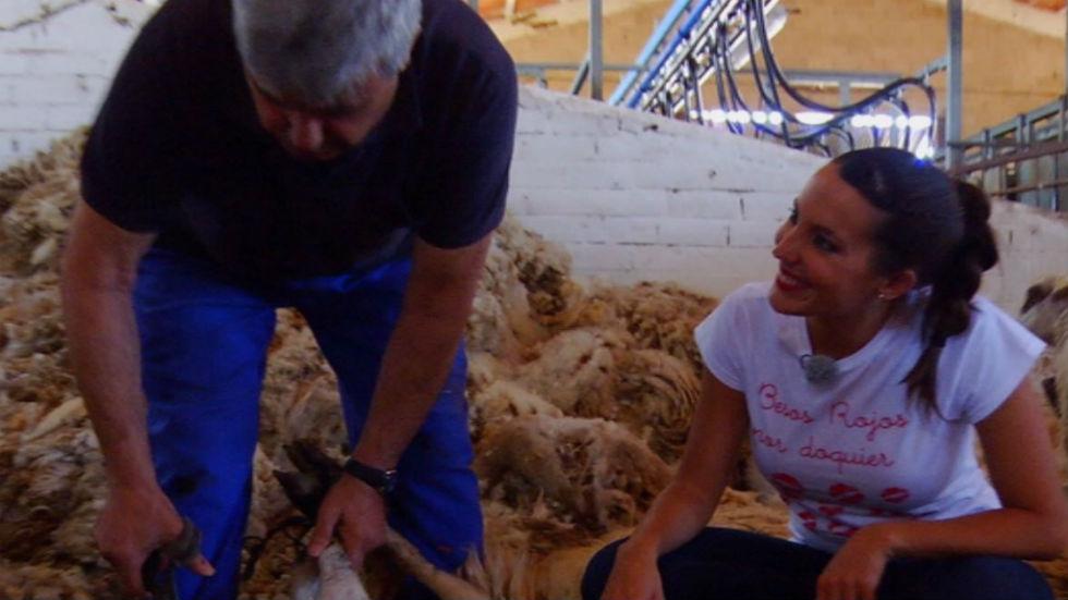 Aquí la tierra - Es hora de conseguir lana