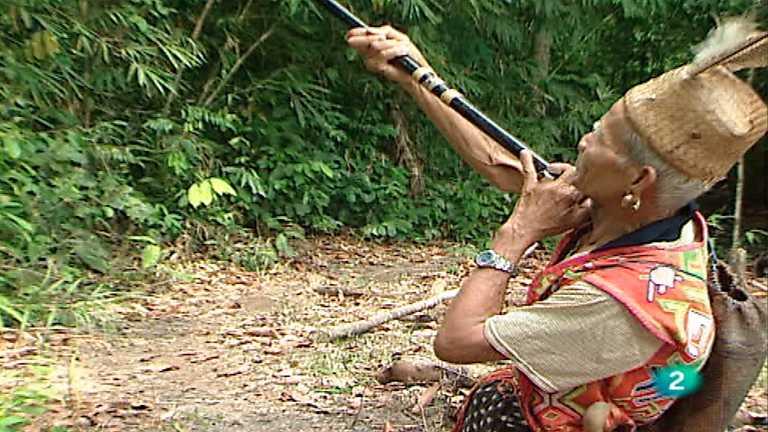 Otros pueblos - Iban, Borneo (Malasia)