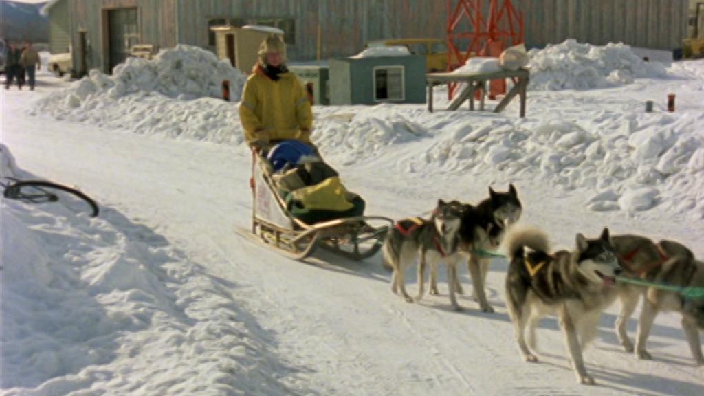 El hombre y la tierra (Serie canadiense) - Iditarod, 1000 millas sobre hielo I
