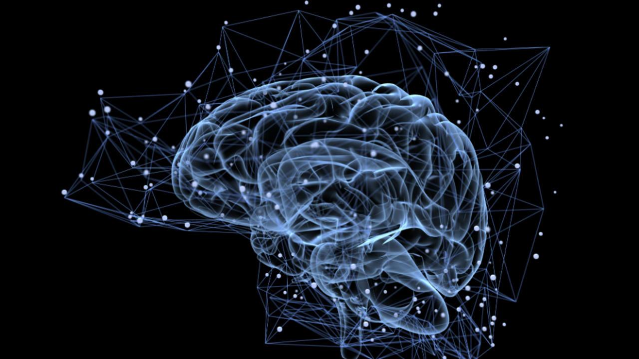 Imagen de la actividad del cerebro