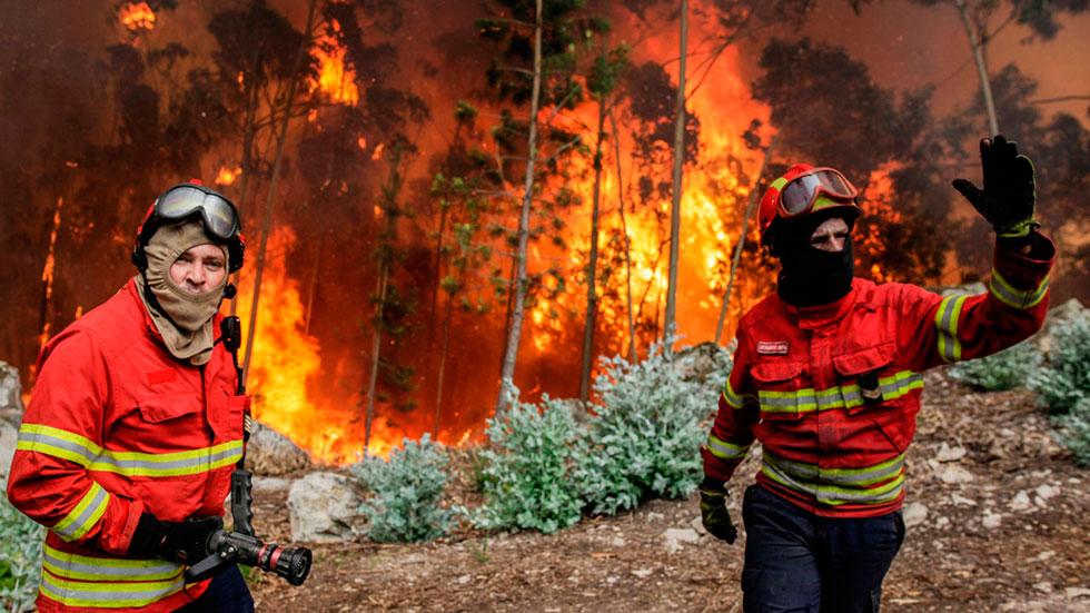 El impacto de un rayo en un árbol, la causa más probable del incendio