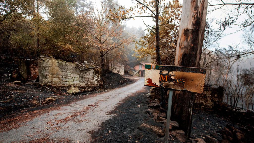 Los incendios de Galicia arrasan más de 35.000 hectáreas