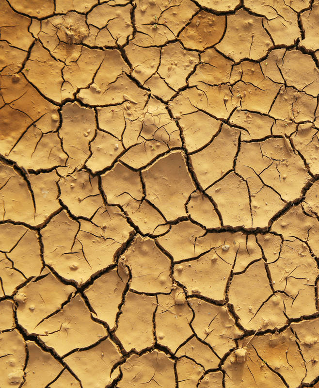 El incremento de la temperatura media acarrea efectos devastadores como las sequías