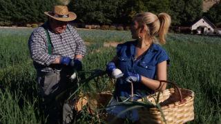 Aquí la tierra - La influencia del agua en las verduras