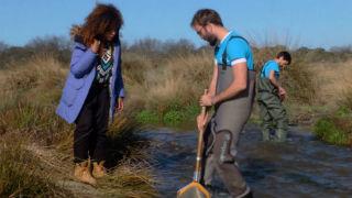 Aquí la tierra - Los insectos nos hablan sobre la calidad del agua