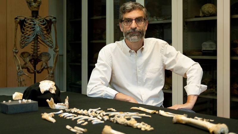 El investigador Antonio Rosas, junto al esqueleto del niño neandertal