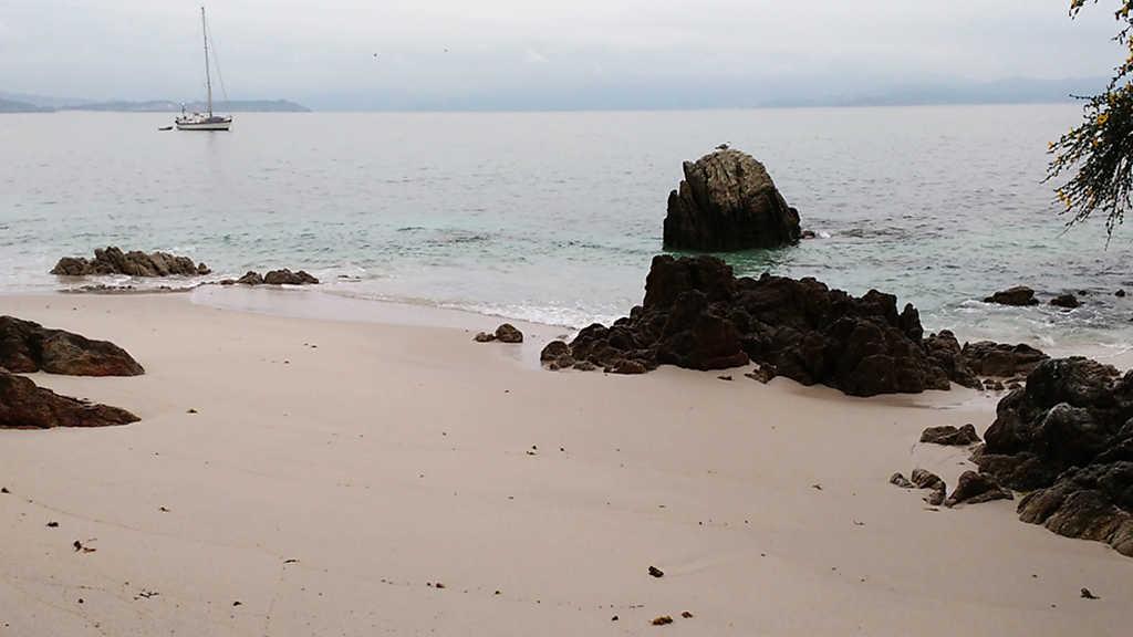 Crónicas - La isla humana