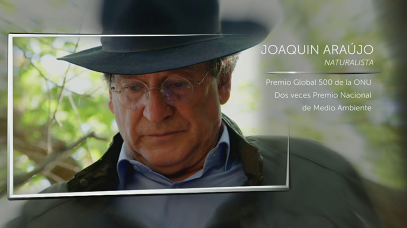 El señor de los bosques - Joaquín Araújo