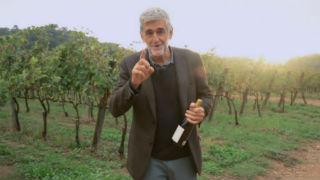 Aquí la tierra - Juanma López Iturriaga y el vino