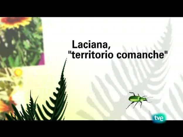 El escarabajo verde - Laciana: territorio comanche