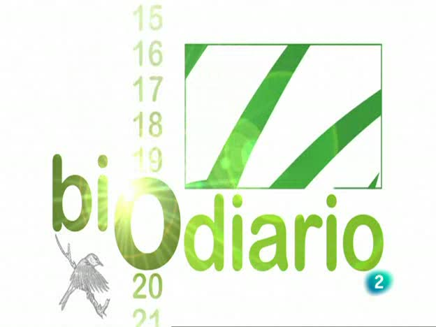 Biodiario - La lagartija de Valverde