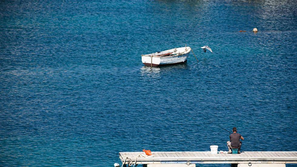 En Portada - Lampedusianos