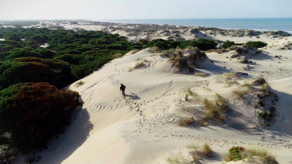 Aquí la tierra - Leyendo el paisaje de Doñana