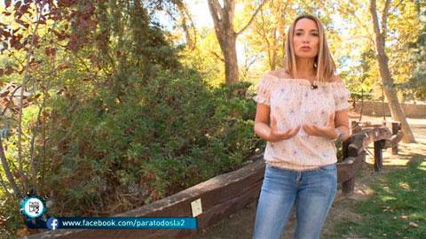 Para Todos La 2 - Patricia Ramírez consejos para no depender de los 'likes' de los demás