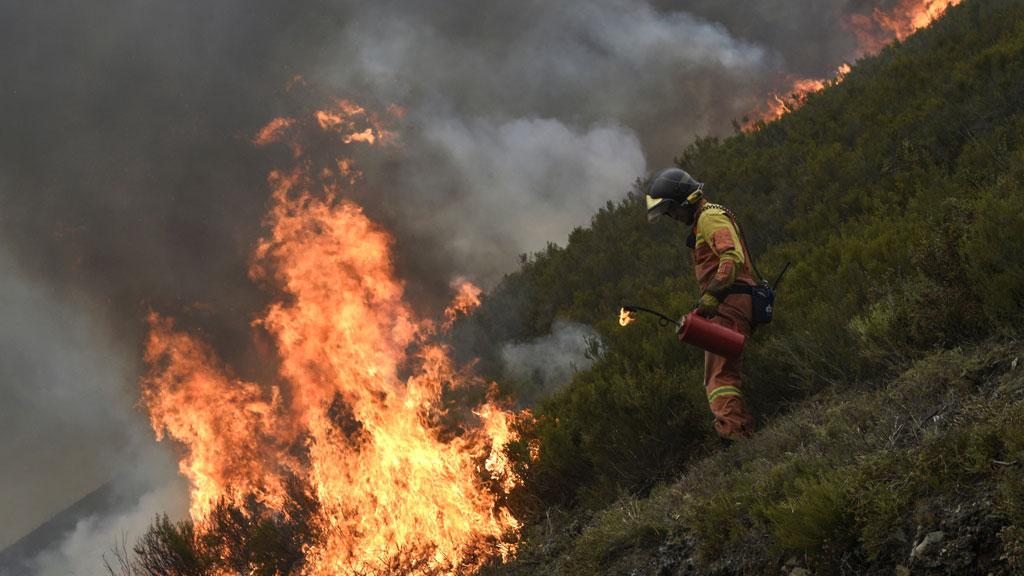 La lluvia y la bajada de temperaturas ayudan en la extinción de los incendios de Asturias