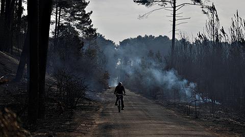 La lluvia sofoca los incendios en Portugal, pero los ecos de la tragedia siguen presentes