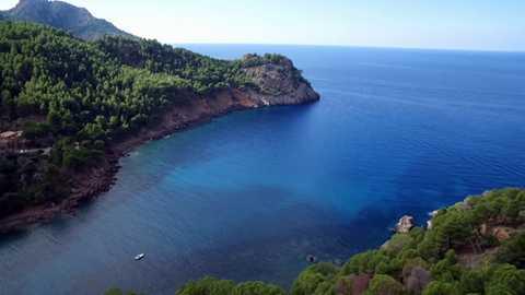 ¡Qué animal! - Mallorca  (Islas Baleares)