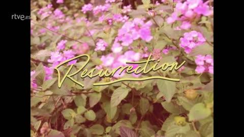 Marta Knight - Resurrection (Lyric video)
