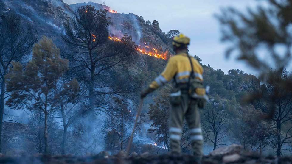 Más de 200 personas trabajan para extinguir un incendio forestal en Murcia