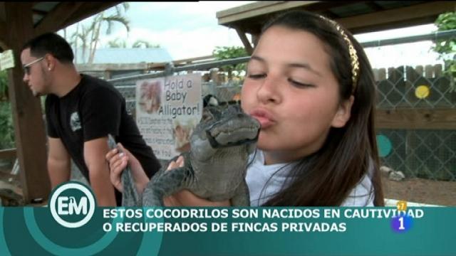 Españoles en el mundo - Miami