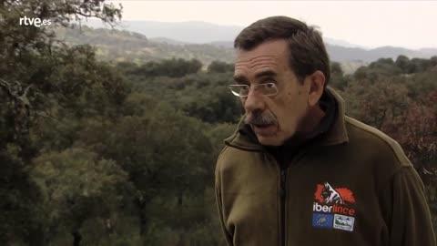 Miguel Ángel Simón, Director Life+Iberlince