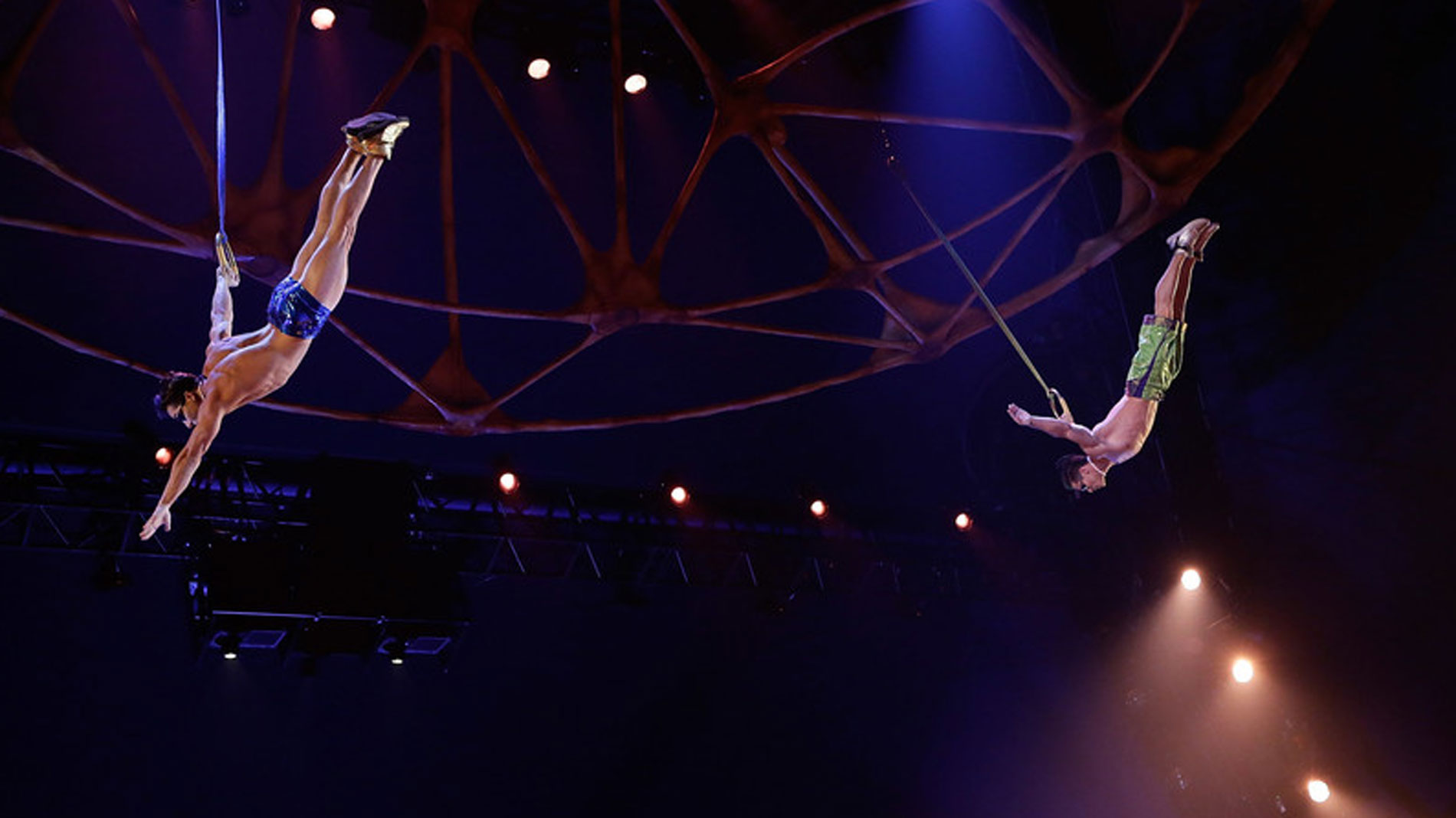 Muere un acróbata del Circo del Sol tras caer al suelo durante un espectáculo en Florida