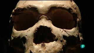 Extras DVD - Museo de la evolución humana: memoria del futuro