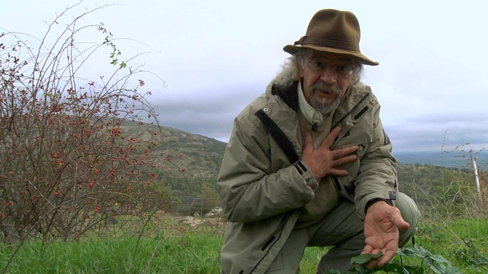 Aquí la Tierra-La nueva lección botánica de Juan Plantas
