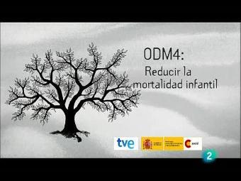 Historias del milenio - Objetivo 4: reducir la mortalidad infantil (Mozambique)