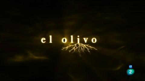 Versión española - El olivo (coloquio)