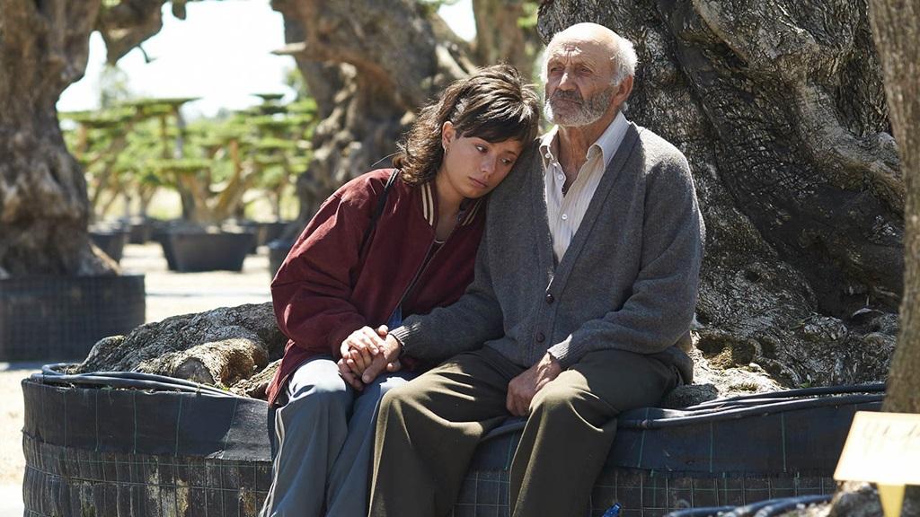 Cine en TVE - El olivo