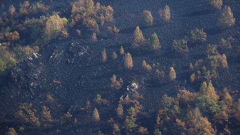 La oposición lamenta la falta de prevención y la política forestal de la Xunta y Medio Ambiente