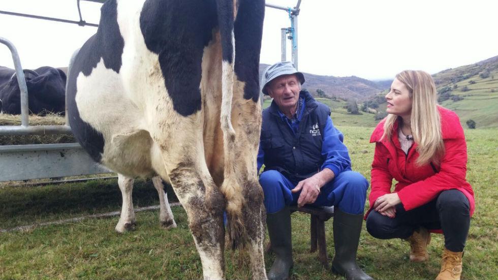 Aquí la tierra - Paco y la vaca lechera