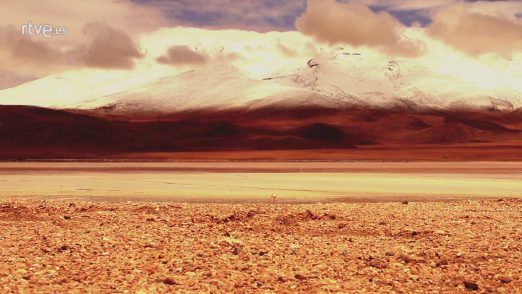 Palabra Voyeur - Los desengaños. Antonio Lucas
