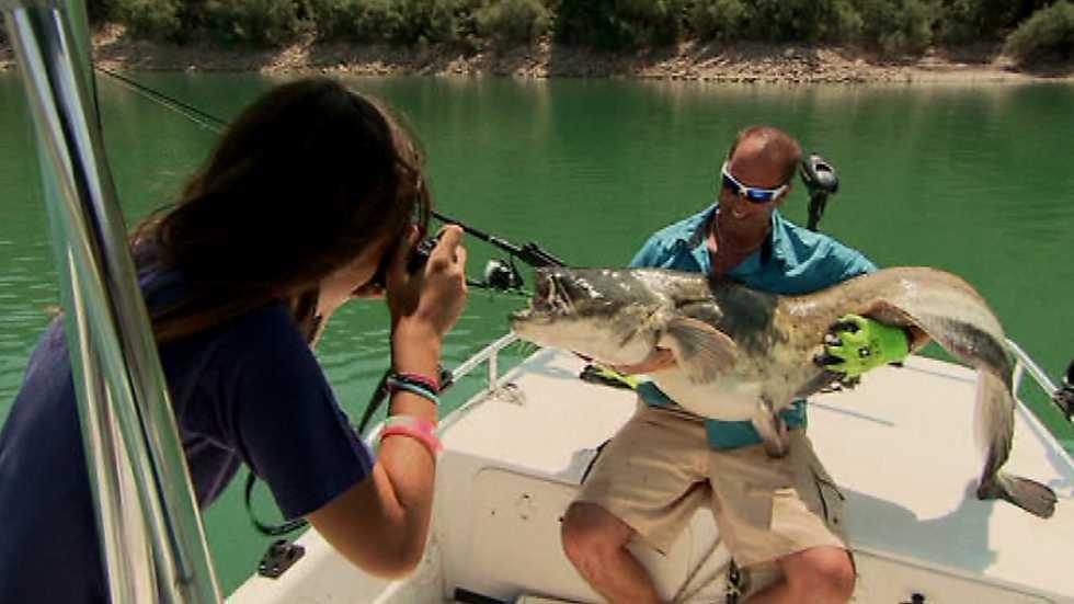Jara y sedal - Pesca del siluro en Mequinenza