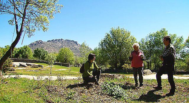 UNED - Plantas silvestres comestibles. Parte 2 - 09/06/17
