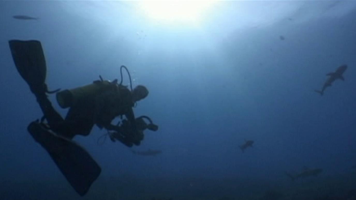 Bubbles - Polinesia francesa