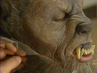 Primeras imágenes de los maquillajes de 'Lobos de Arga'