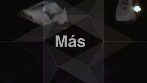 Masquevoley - Programa 22