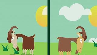 Desafía tu mente - ¿Pueden verse estas cabras sin moverse?