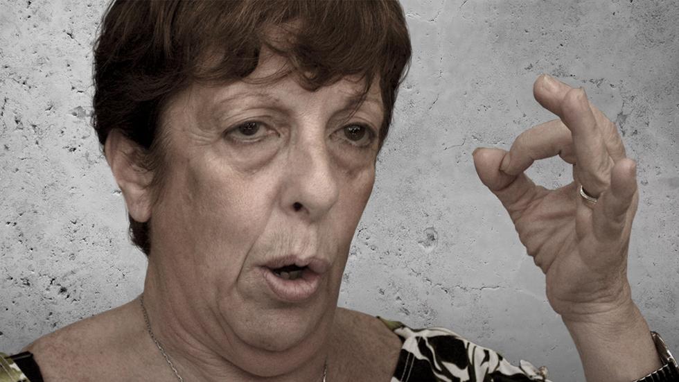 Quién es quién en el caso Nisman - Viviana Fein. La fiscal.