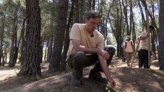 Aquí la tierra - Reforestando nuestros bosques