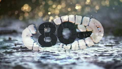 80 Cm - Resumen temporada