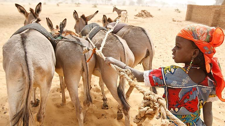 El reto de que la sequía no se convierta siempre en hambruna
