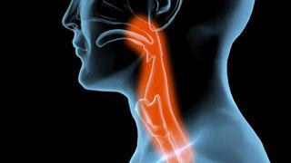 Saber Vivir - Garganta, faringitis y laringitis