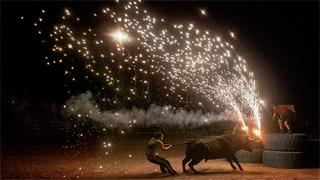 Documenta2016: Santa fiesta, de Miguel Ángel Rolland