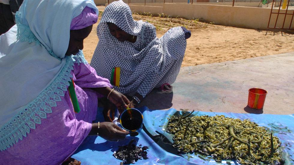 Save the Children y la UE ponen en marcha un programa para paliar la crisis alimentaria en Mauritania