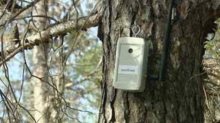 Un sensor inalámbrico permite la detección de incendios