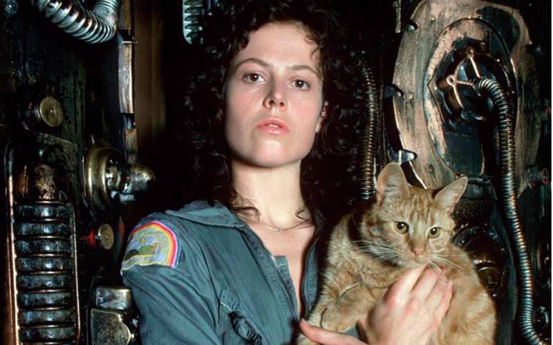 aver y Jonesy en 'Alien, el octavo pasajero'
